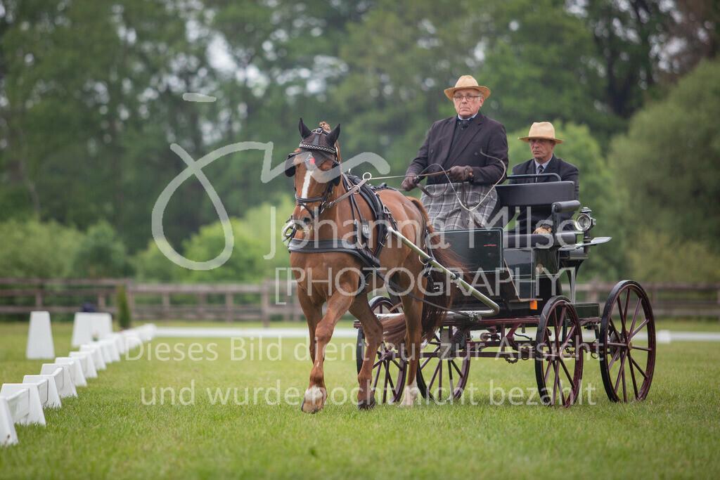 190525_Fahren-004 | Pferdesporttage Herford 2019 Fahren