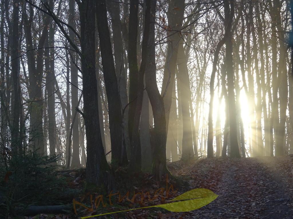 Inneres Licht | Ein Licht, das von innen heraus leuchtet, kann niemand löschen. Das Bild erinnert Dich daran.