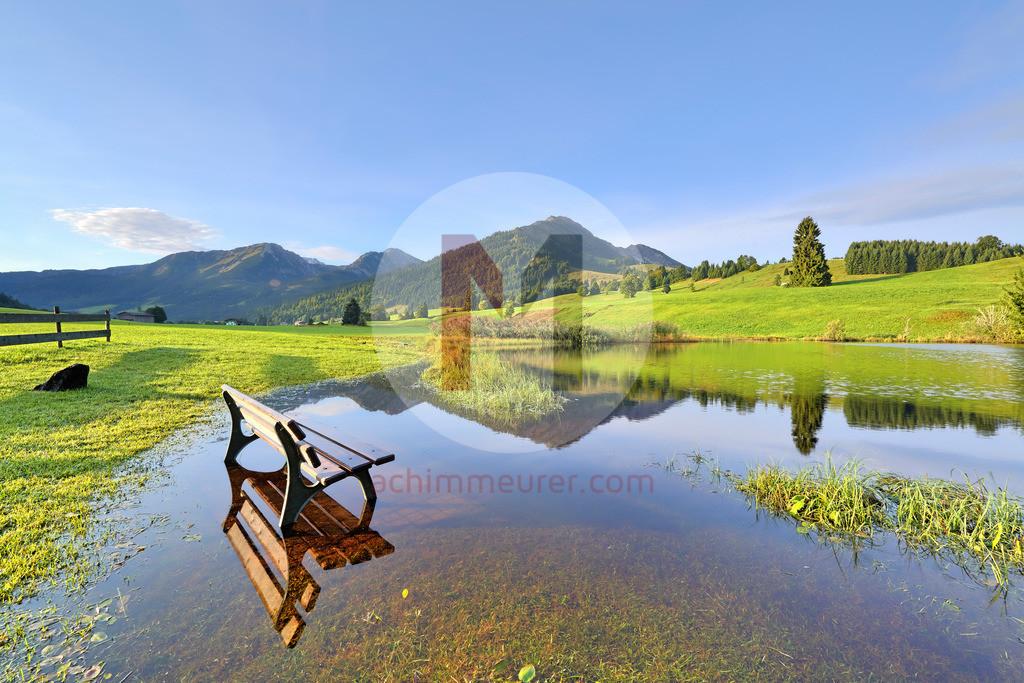 Morgenstimmung am Moorteich, Floschen, Tannheimertal, Tirol, Österreich