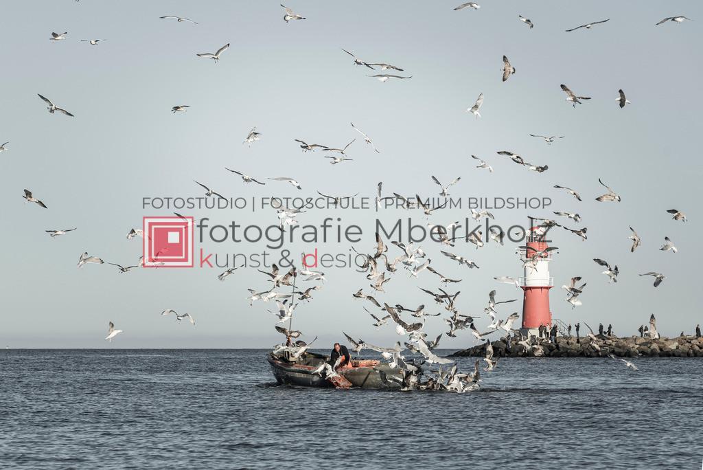 _Marko_Berkholz_mberkholz_warnemünde_MBE4829 | Die Bildergalerie Düne, Strand & Meer des Warnemünder Fotografen Marko Berkholz, zeigt Impressionen der abwechslungsreichen Dünenlandschaft an der Ostsee.