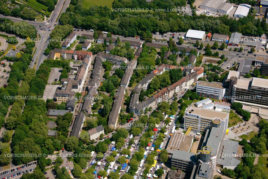 ES10058451 |  Essen, Ruhrgebiet, Nordrhein-Westfalen, Germany, Europa, Foto: hans@blossey.eu, 29.05.2010