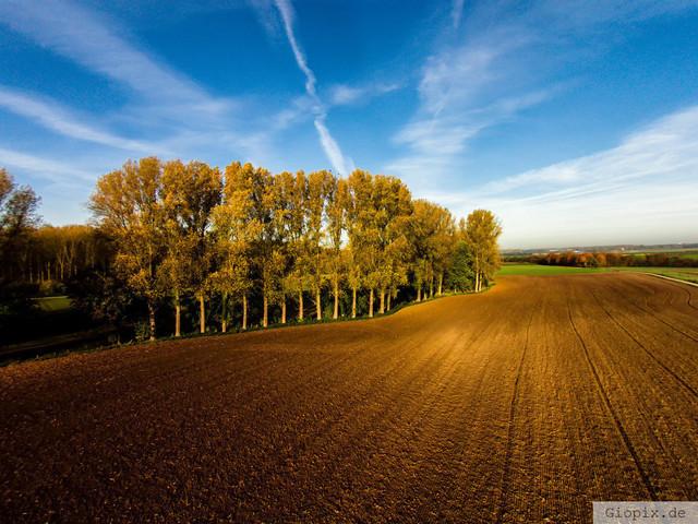 Der Acker | Luftaufnahme aus ca. 15 Meter Höhe mit Blick auf einen Acker und Bäume nahe dem Raderbroicher Wald
