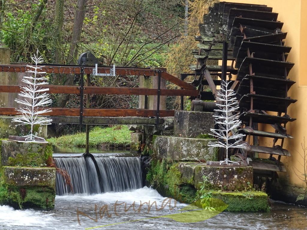 Mühlenzauber mit Winterweihnachtsbäumen | Mühlrad mit Winterweihnachtsbäumen lädt ein, den Weihnachtszauber zu spüren!