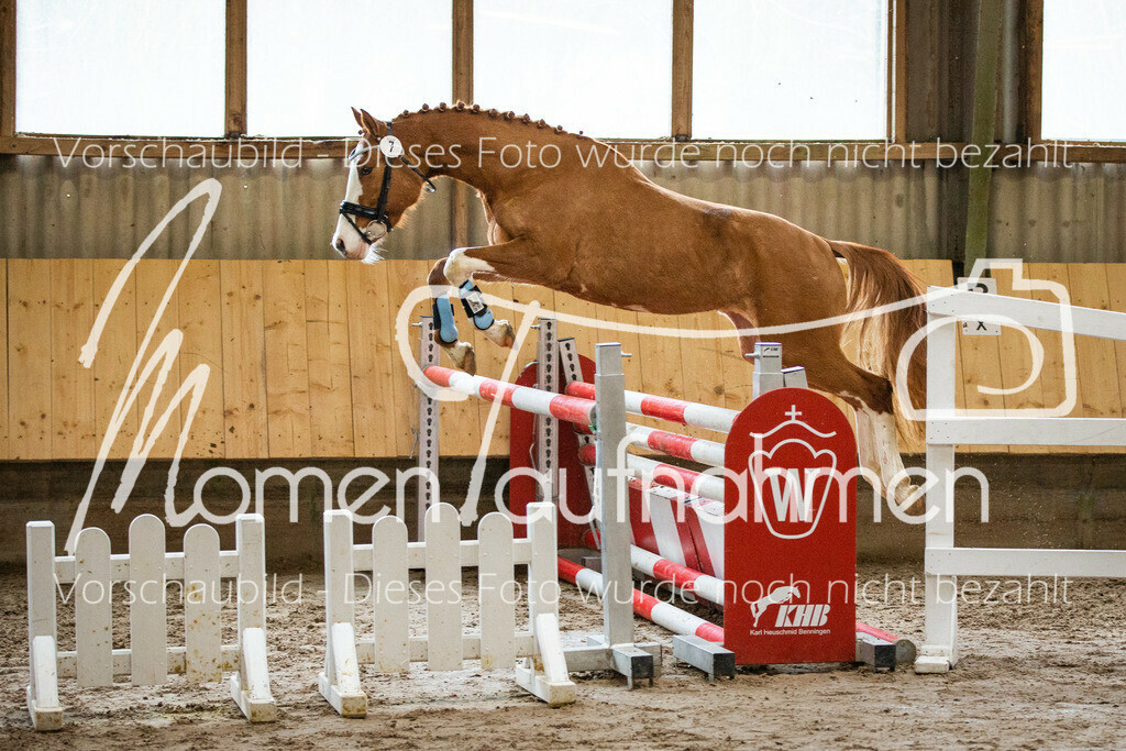 Freispringen-Pony-3j-38