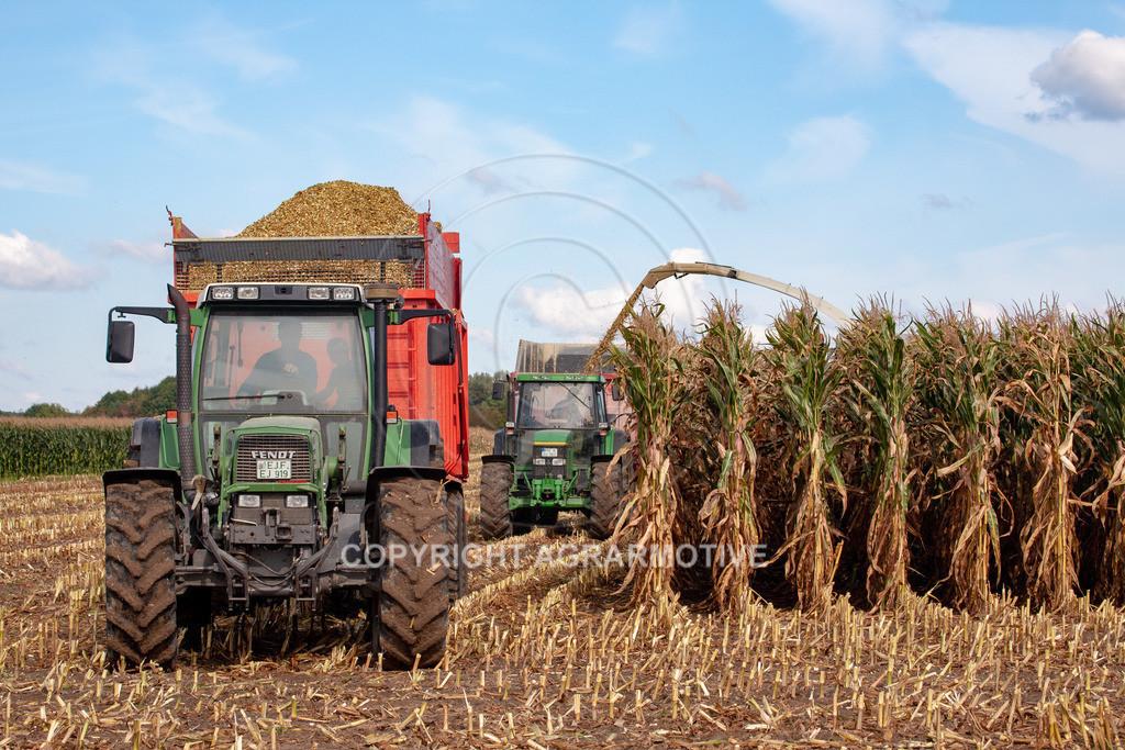 20080914-IMG_8936 | Silomais wird gehäckselt - AGRARFOTO Bilder aus der Landwirtschaft
