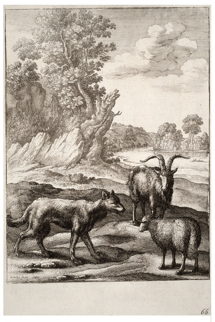 Wenceslas_Hollar_-_The_wolf_and_the_lamb_(State_1)