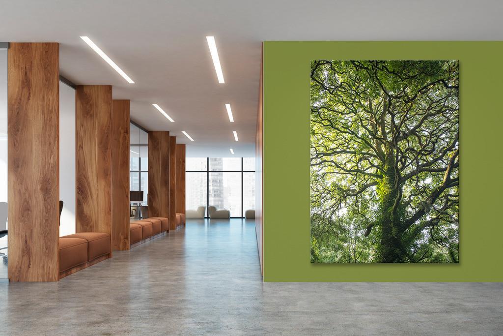 Foyer mit Baummotiv   Anwendungsbeispiel für eine Wandgestaltung für den Eingangsbereich in Ihrem Unternehmen. Sie finden das Motiv in der Galerie Farben und Formen - Bäume und Grün