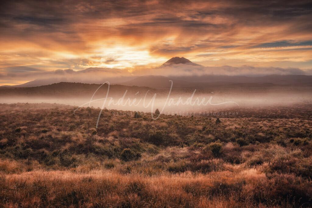 Morgennebel bei den Vulkanen