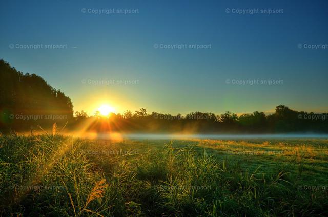 Nebel_20_1 | Strahlen der aufgehenden Sonne durch den Bodennebel.