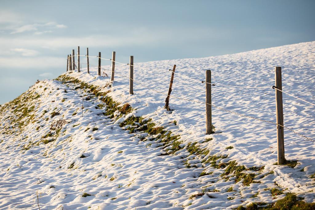 Keine Schneegrenze | Weidezaun am Irschenberg nach erstem Schneefall.