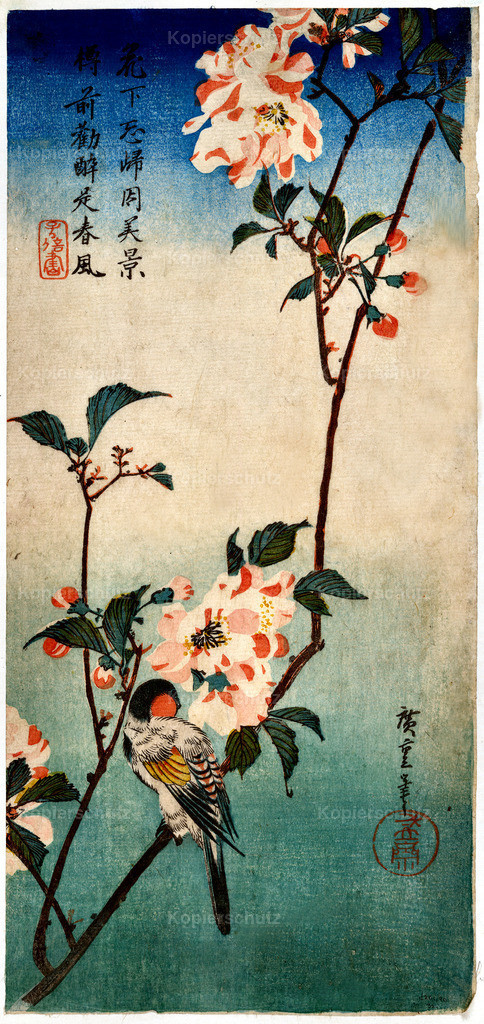 Small-bird-on-a-branch-of-kaidozakura-1838 - Large Format