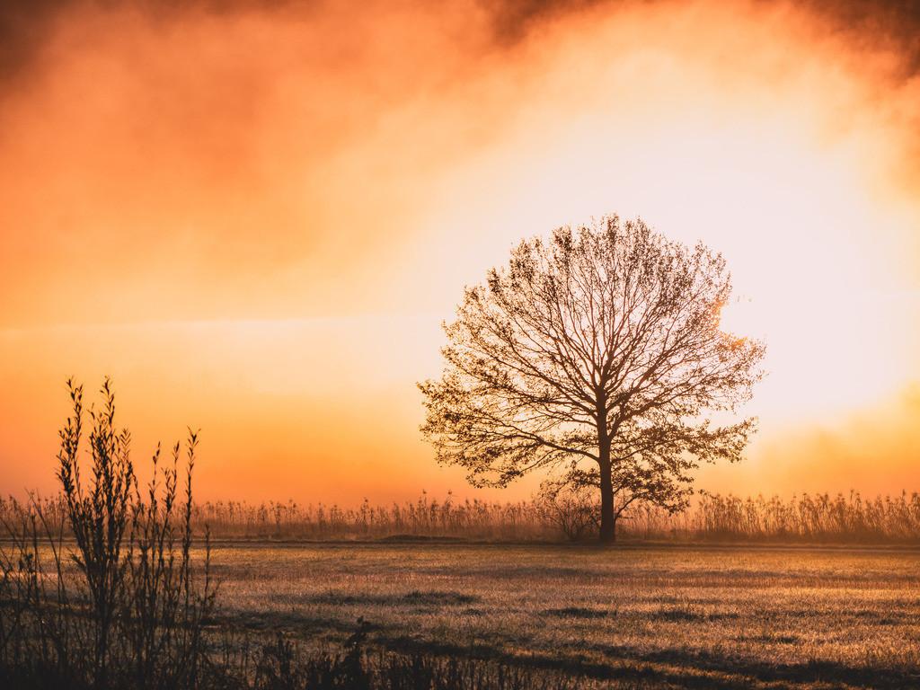 Herbstabschied | Der Herbst sagt Adieu und verabschiedet sich mit traumhaften Farben und zauberhaftem Licht.