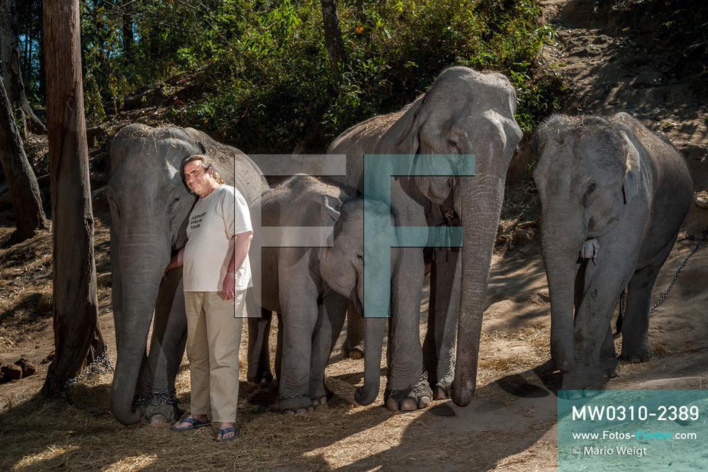 MW0310-2389   Thailand   Mae Sapok   Bodo Jens Förster   Elephant Special Tours   Februar 2010  ** Feindaten bitte anfragen bei Mario Weigt Photography, info@asia-stories.com **