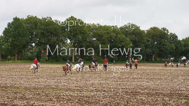 Jagd Perdoel  214641_Marina Hewig