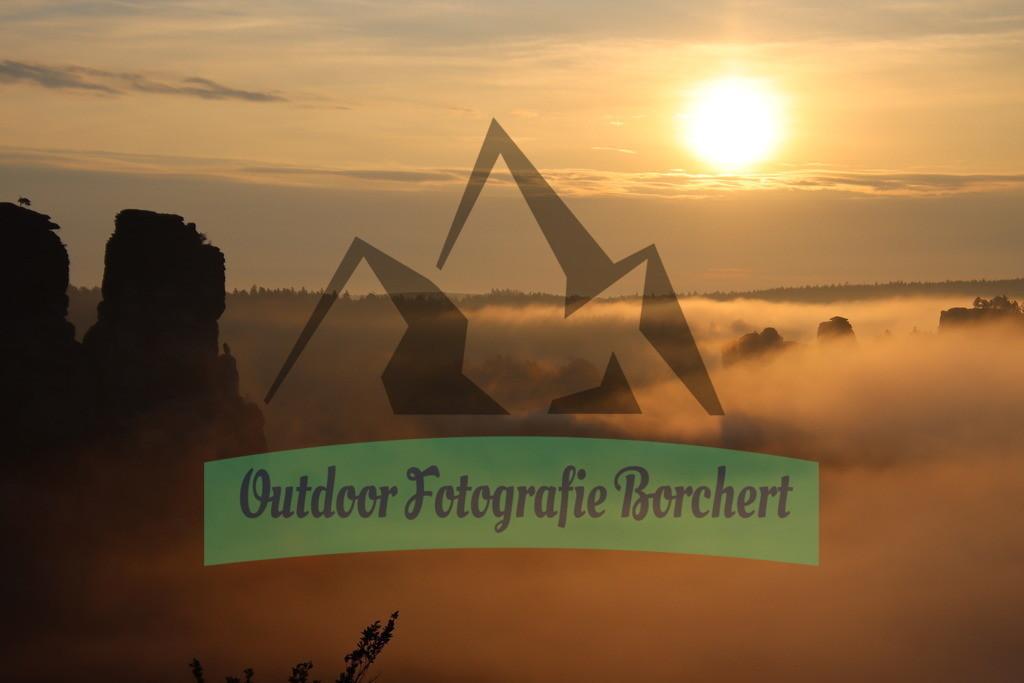 Bastei_Gaense_Sonnenaufgang_Nebel_altIMG_1150 | Bastei, Gänse im Sonnenaufgang