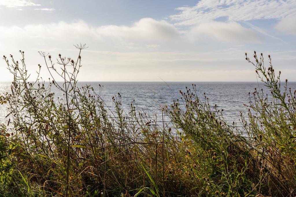 Strand in Hökholz   Steilküste in Hökholz im Herbst