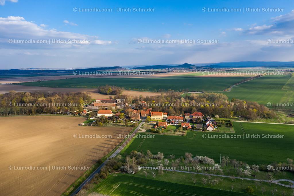 10049-50250 - Mahndorf bei Halberstadt