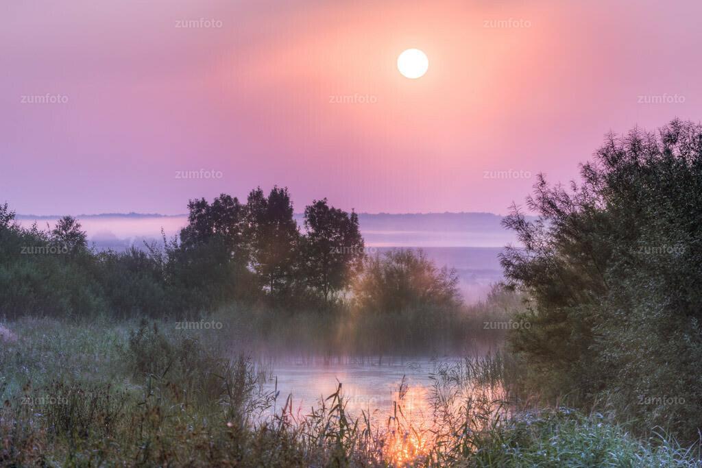0-130726_0447-9011-18 | --Dateigröße 5760 x 3840 Pixel--  Teich im Sonnenaufgang bei Nebel