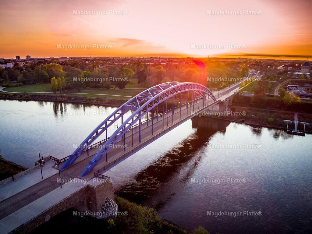 Magdeburg Stadtpark abends-0032
