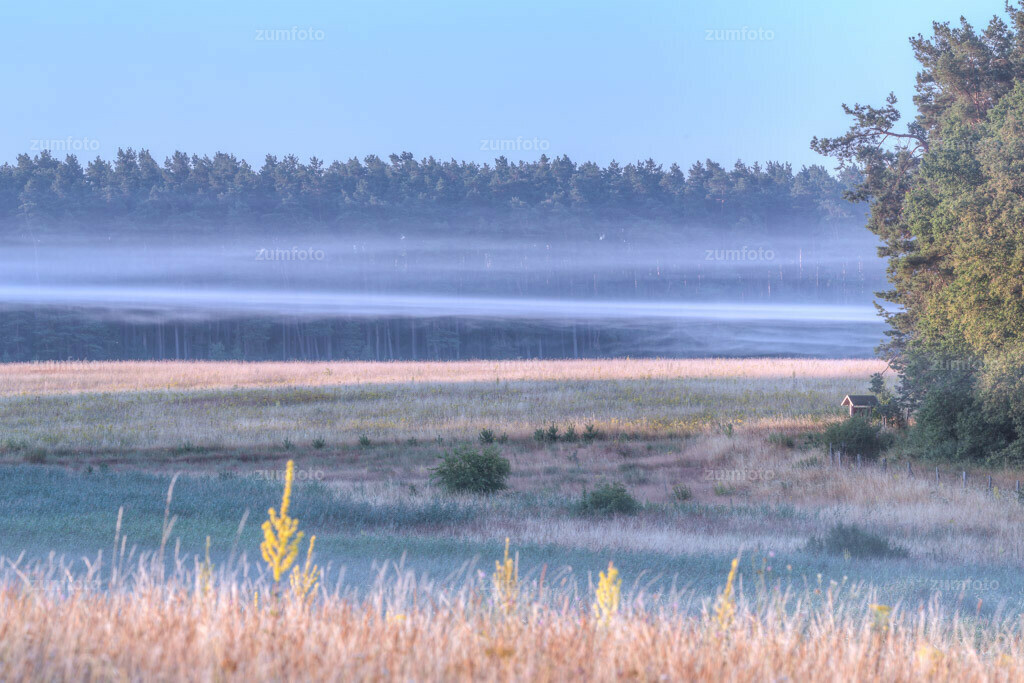 0-130722_0450-7555 | --Dateigröße 5760 x 3840 Pixel-- Nebelschwaden über der Wiese an der Feisneck
