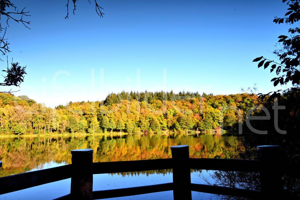 Herbst am Holzmaar | Das Holzmaar in der Vulkaneifel