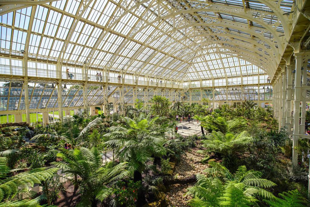 Temperate House - Royal Botanic Gardens Kew Gardens in London   15.05.2018, die Royal Botanic Gardens, Kew (Kew Gardens) sind eine ausgedehnte Parkanlage mit bedeutenden Gewächshäusern. Sie liegen zwischen Richmond upon Thames und Kew im Südwesten Londons und zählen zu den ältesten botanischen Gärten der Welt. Innenansicht vom Temperate House (Haus der gemäßigten Klimazonen), mit 4880 m² etwa doppelt so groß wie das Palm House und damit das größte der Gewächshäuser in Kew, entstanden nach Plänen des englischen Architekten Decimus Burton (1859–63), erbaut vom Eisengießer Richard Turner.