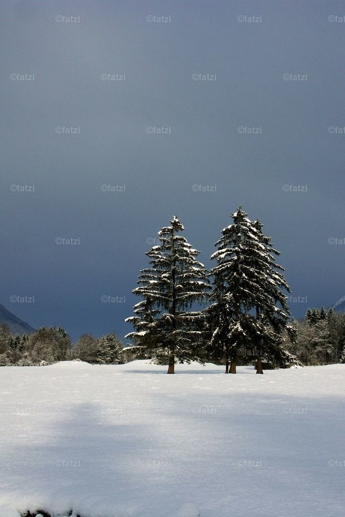 winter_08_08k