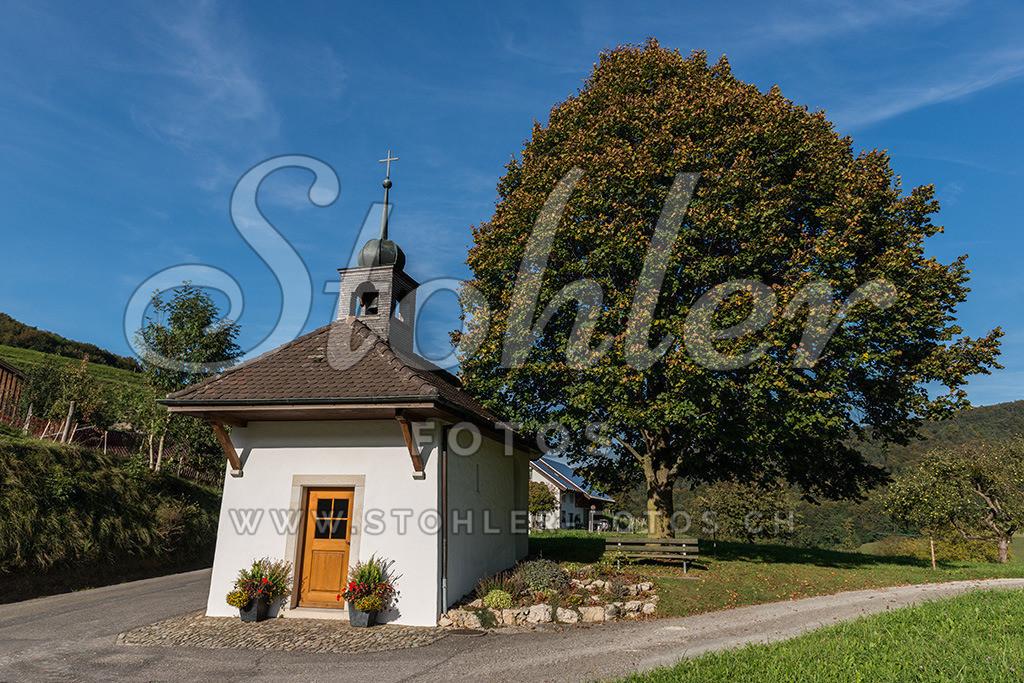 Sankt Wendelinskapelle, Bärschwil (SO)   Die Sankt Wendelinskapelle (1692) steht östlich vom Dorf an einer Wegverzweigung, Bärschwil im Kanton Solothurn.
