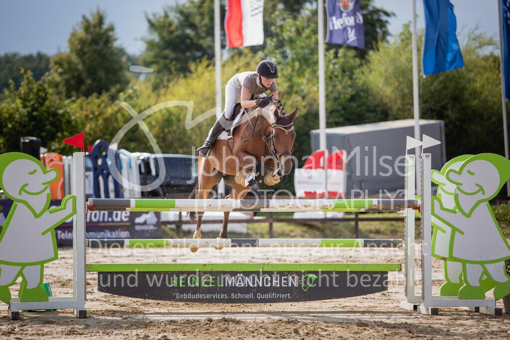 190801_BST_Springpferde-M_5-7J-426   Braker Sommerturnier 2019 Springpferdeprüfung Kl. M* 5-7jährige Pferde