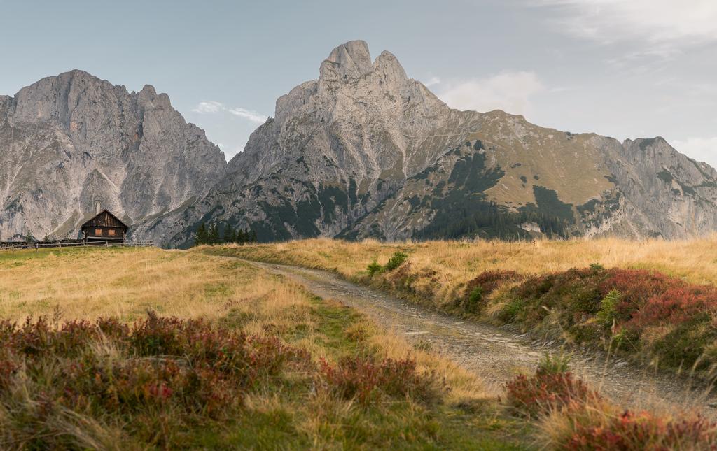 Gesäuse | Der Weg zur Mödlinger Hütte im Gesäuse mit Blick auf den Admonter Reichenstein und den Sparafeld.