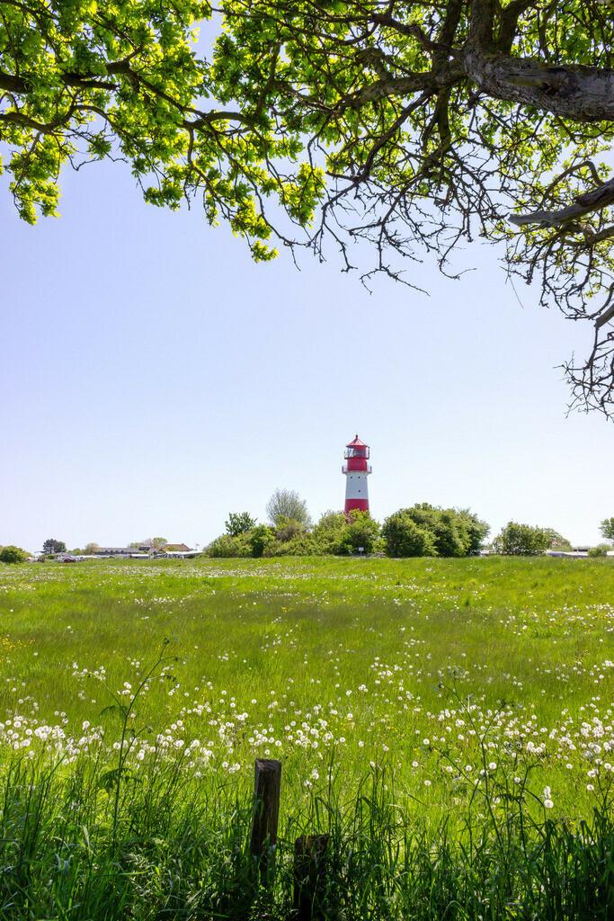 Leuchtturm in Falshöft | Leuchtturm in Falshöft im Frühling