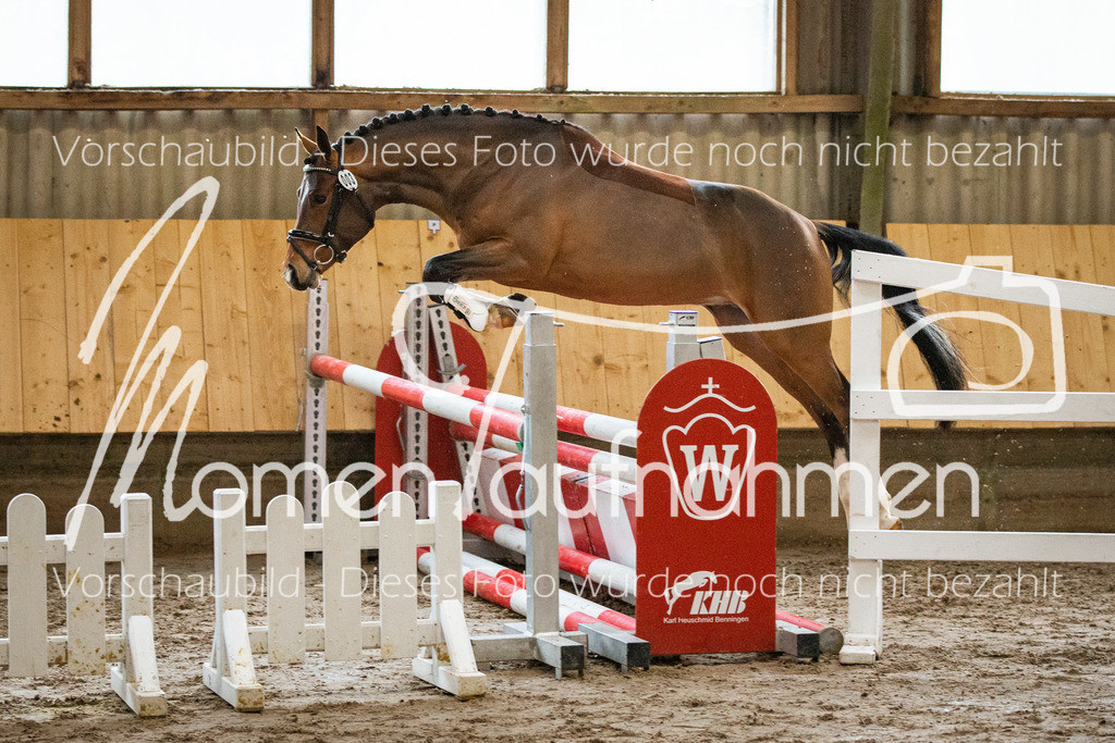 Freispringen-Pony-3j-17