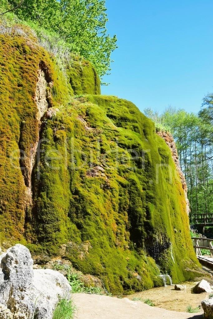 Dreimühlen Wasserfall / Nohner Wasserfall   Nohn, bei Hillesheim in der Vulkaneifel