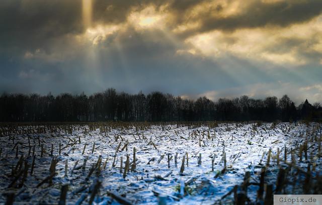 Schneelandschaft zwischen Holzheim & Reuchenberg | Dieses Foto habe ich auf den Feldern zwischen Holzheim und Reuchenberg gemacht.