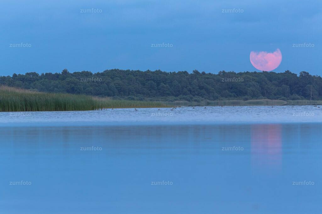 0-140613_214950-9915 | --Dateigröße 5760 x 3840 Pixel-- Monaufgang über dem Fleesensee