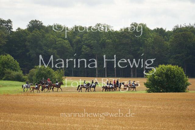 Jagd Knoop 217116_Marina Hewig