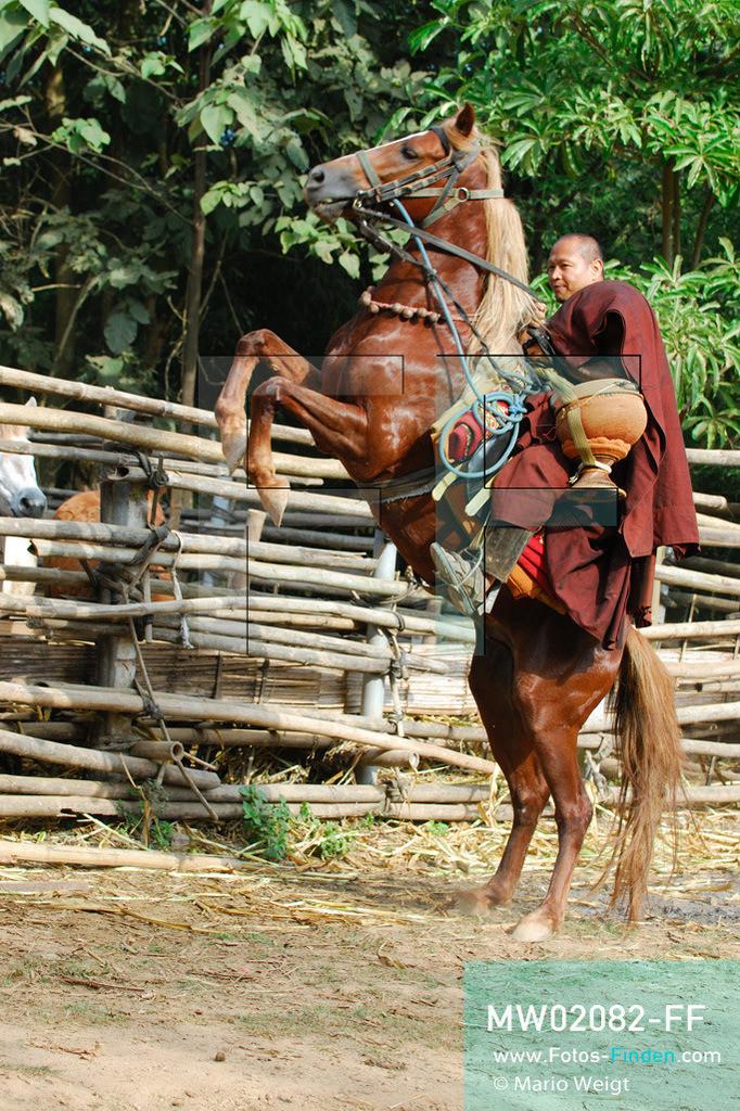 MW02082-FF | Thailand | Goldenes Dreieck | Reportage: Buddhas Ranch im Dschungel | Abt Phra Khru Bah Nuachai Kosito auf seinem Pferd  ** Feindaten bitte anfragen bei Mario Weigt Photography, info@asia-stories.com **
