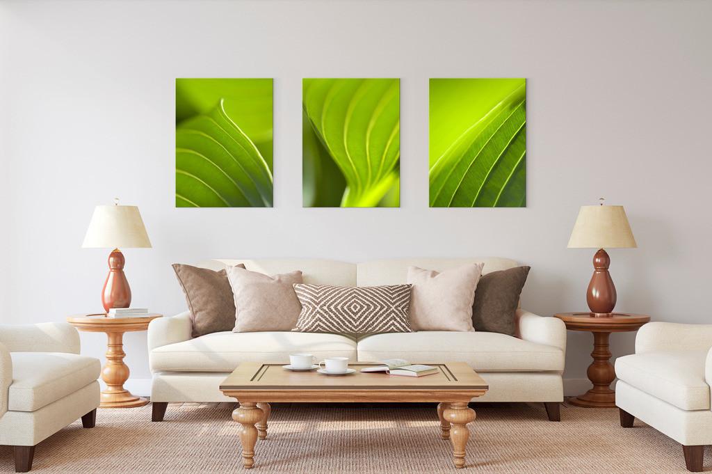 Entspannende Grüntöne im Trio für das Wohnzimmer   Anwendungsbeispiel für die Gestaltung Ihres Wohnbereichs mit mehreren Bildern. Sie finden diese Motive in der Galerie Nimm drei - Pflanzenwelten - Pflanzen I