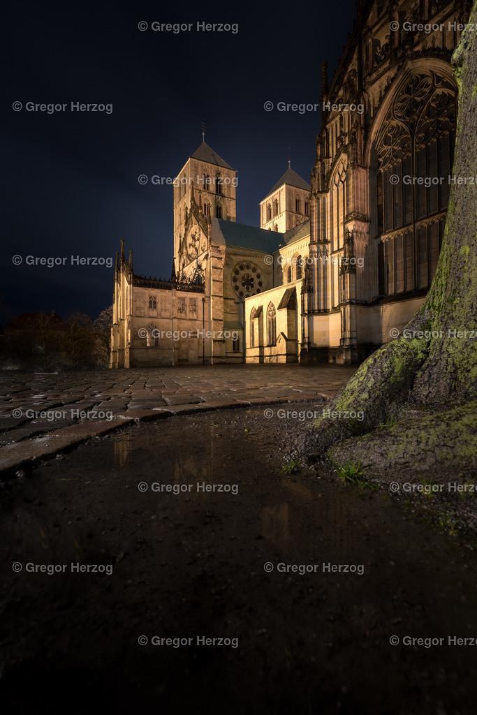 Märchenhafter Dom | Dom Münster