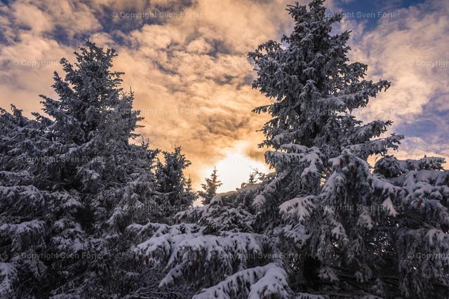 Natur_Winter_Schneekopf_012021-00103