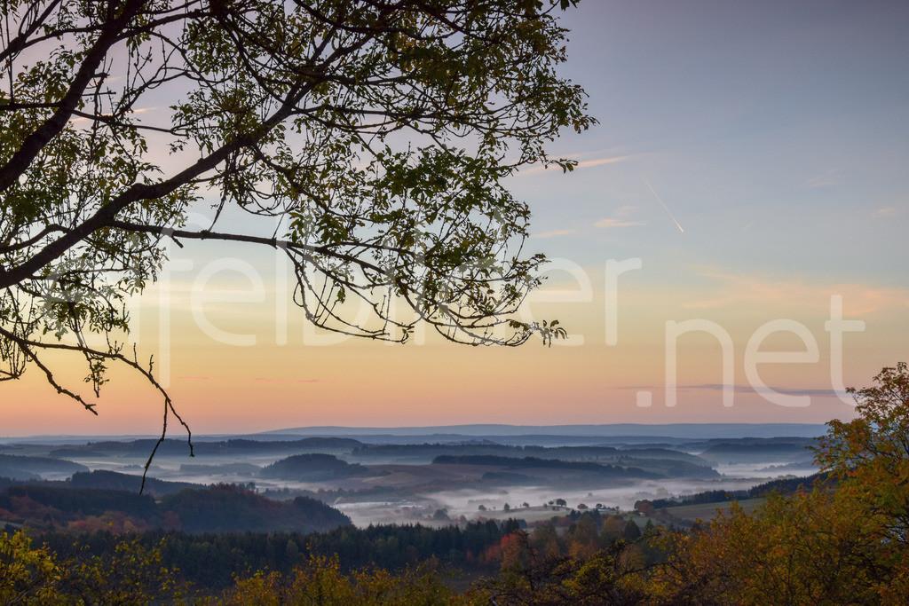 Morgenlicht, Nebel, Berge und Täler | Landschaft bei Daun Schalkenmehren in der Eifel (Vulkaneifel)