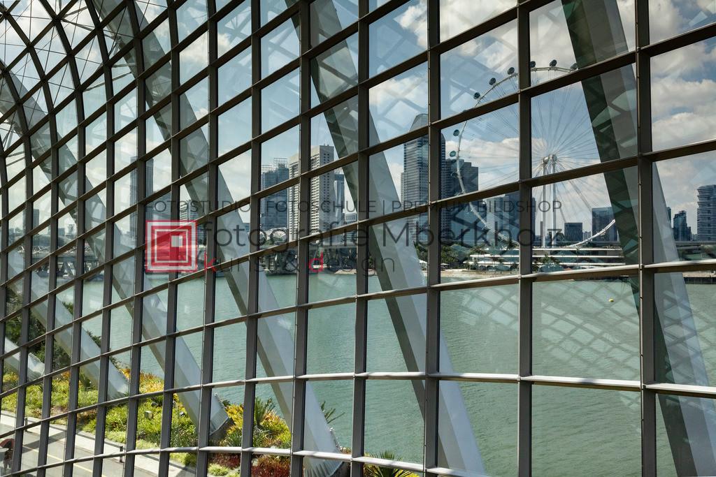 _Rainer_Schau_mberkholz_Singapur_IMG_7831 | Das Projekt