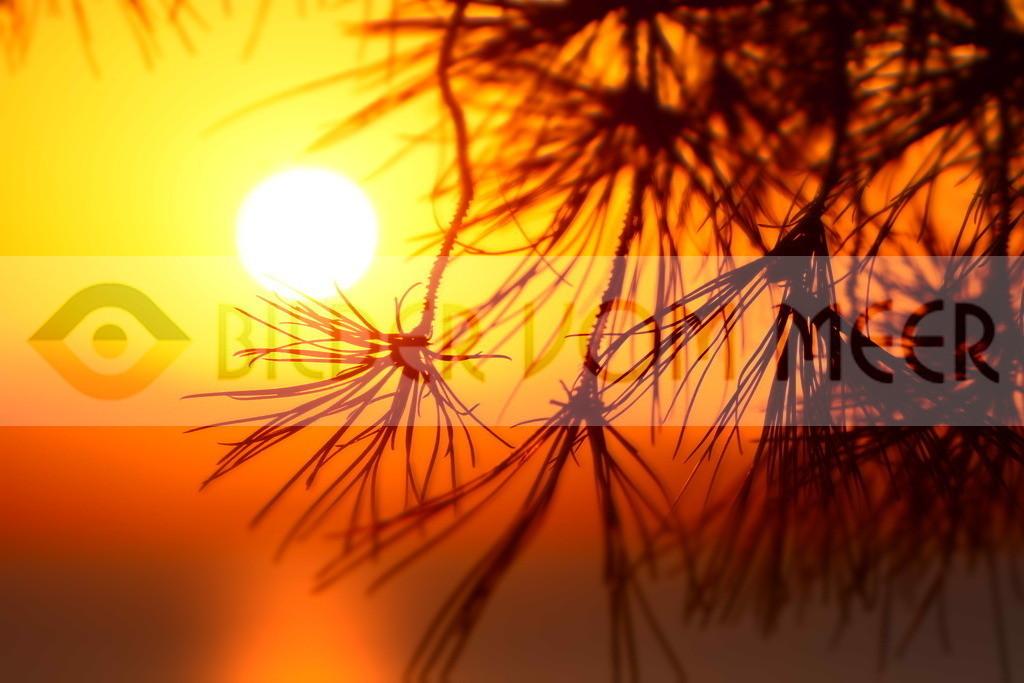 Bilder Sonnenuntergang   Bilder Sonnenuntergang Spanien