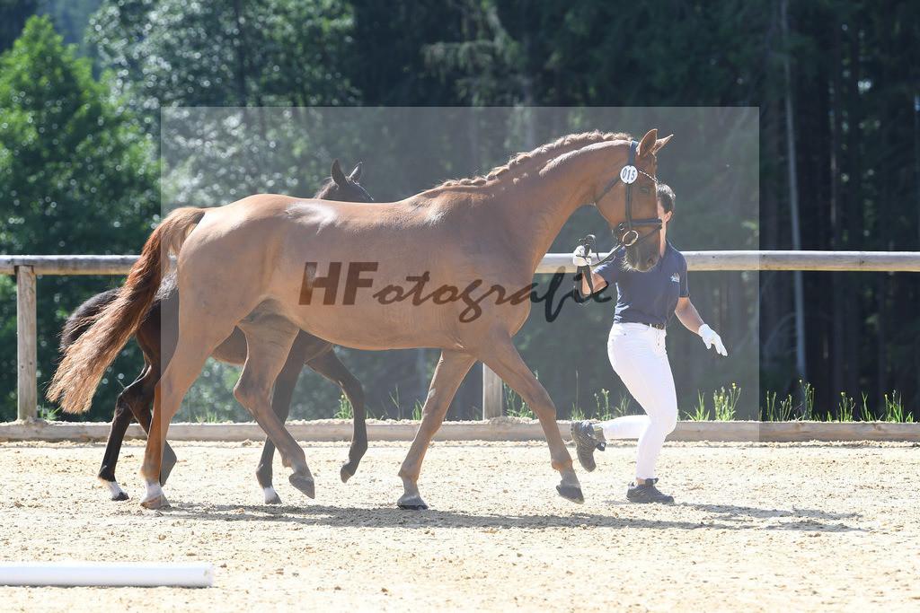 Kat-Nr. 15 HF Bon Coeur_Dobner_3221386