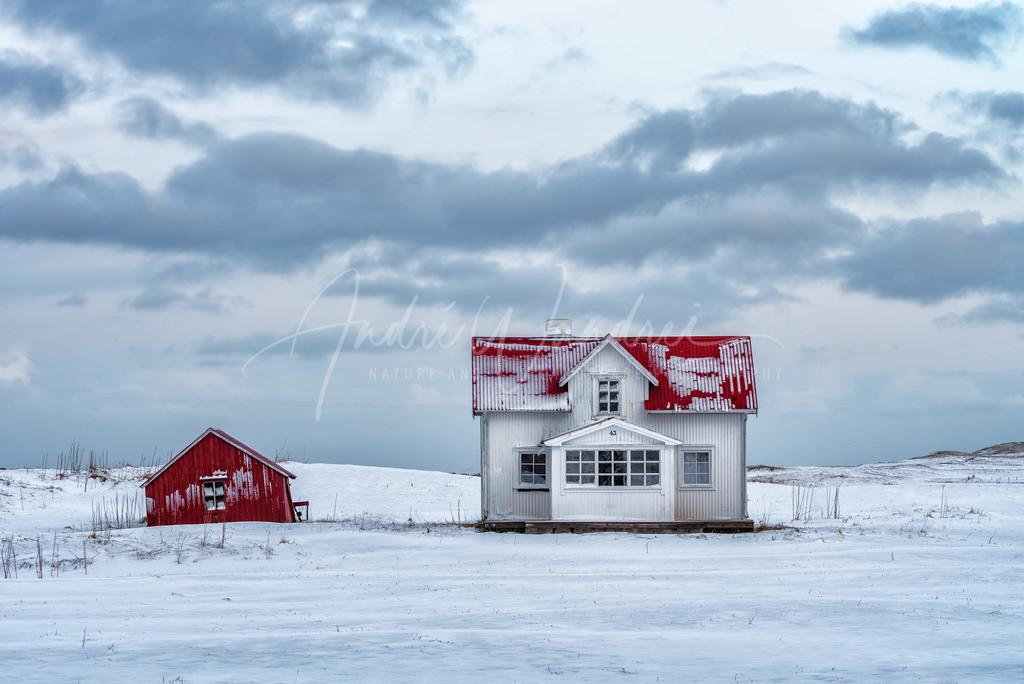 Irgendwo im Schnee