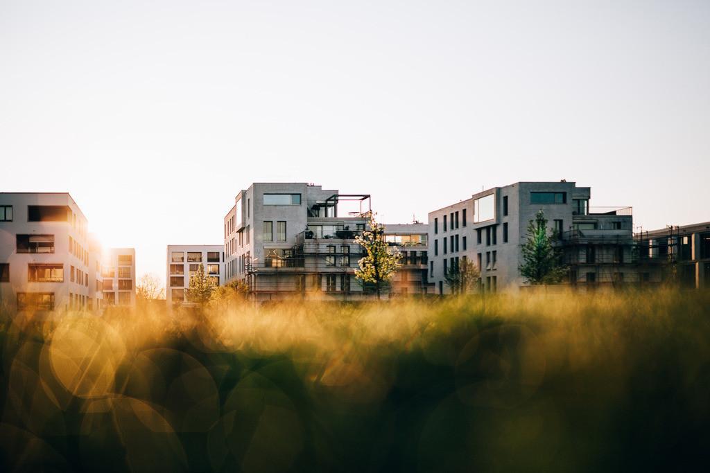 Killesberg sunrise_HQ