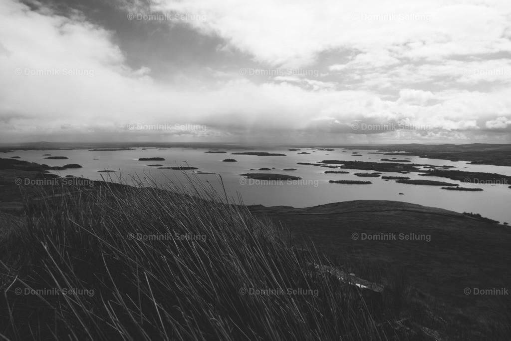 Tralee | Ausblick auf eine große Anzahl von kleinen Inseln