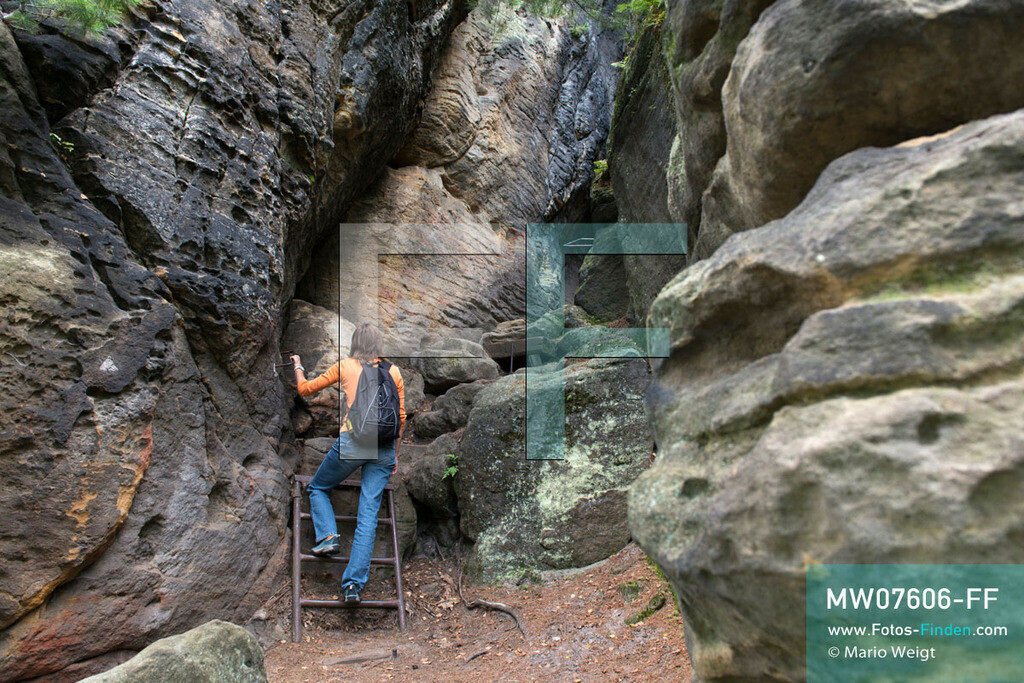 MW07606-FF   Deutschland   Sachsen   Sächsische Schweiz   Aufstieg zum Kleinen Bärenfelsen, ein Tafelberg im Elbsandsteingebirge   ** Feindaten bitte anfragen bei Mario Weigt Photography, info@asia-stories.com **