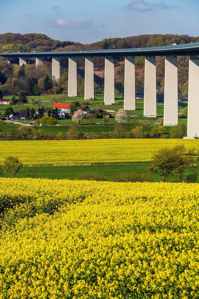 JT-160418-022 | Ruhrtalbrücke, Autobahnbrücke der Autobahn A52, Landschaft im Frühling, Rapsfelder, bei Mülheim an der Ruhr,