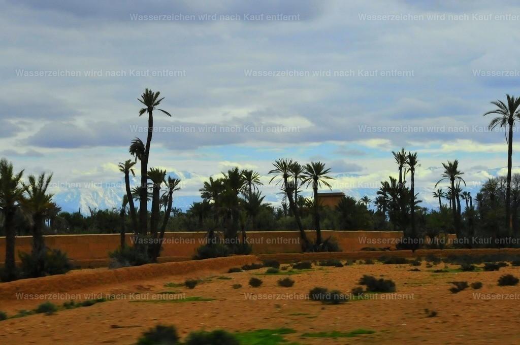 Palmeraie Marrakech | Palmeraie Marrakech